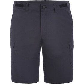 Icepeak Braswell Shorts Men, anthracite